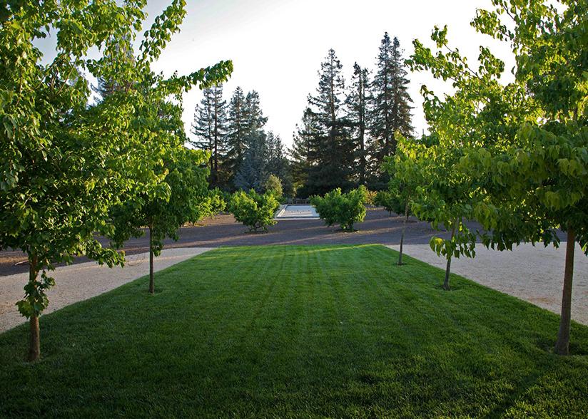 View from the Veranda_Topher Delaney_Garden 3