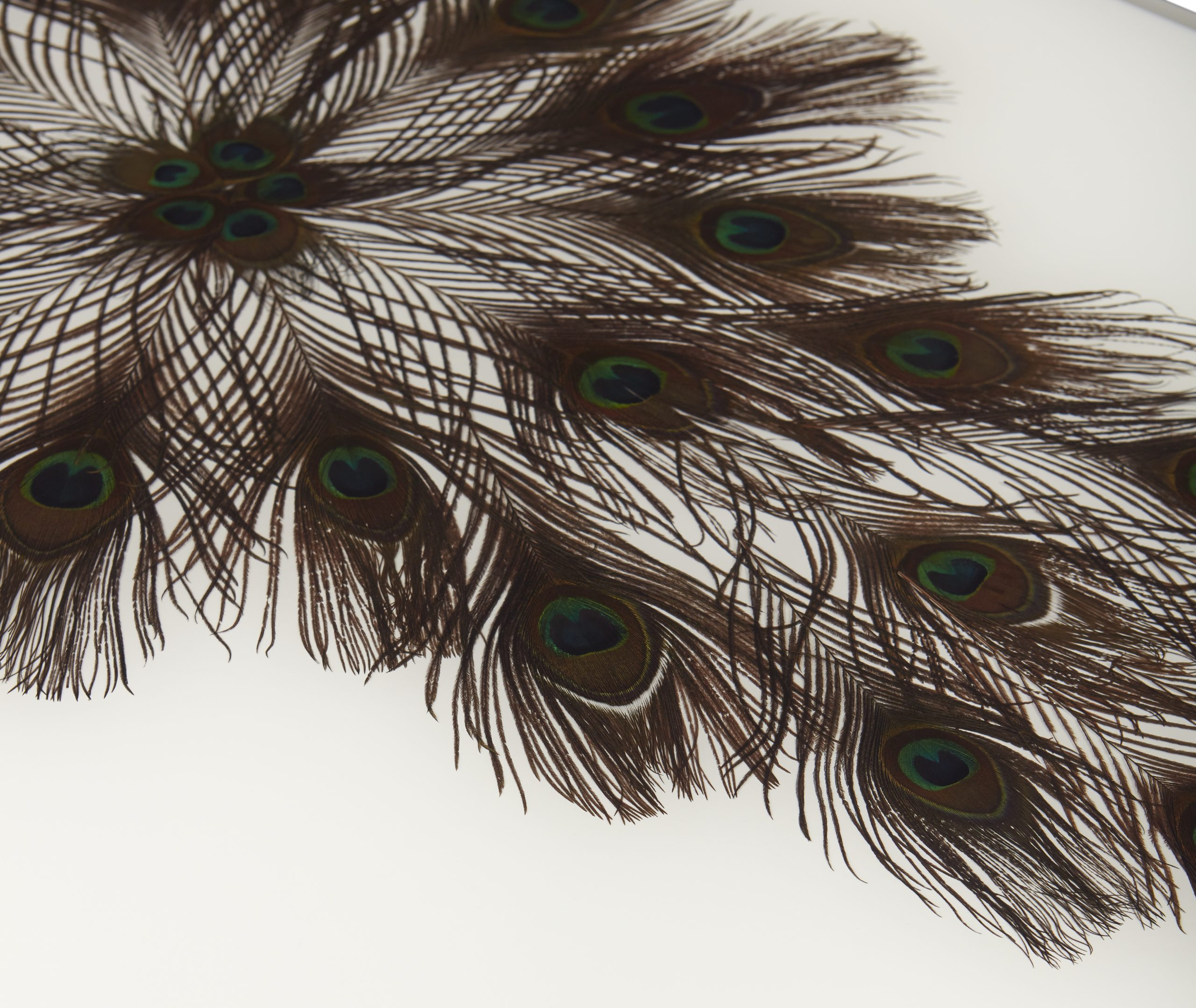 Baker_products_WNWN_peacock_rectangle_cocktail_table_BAA3256_DETAIL-scaled-2