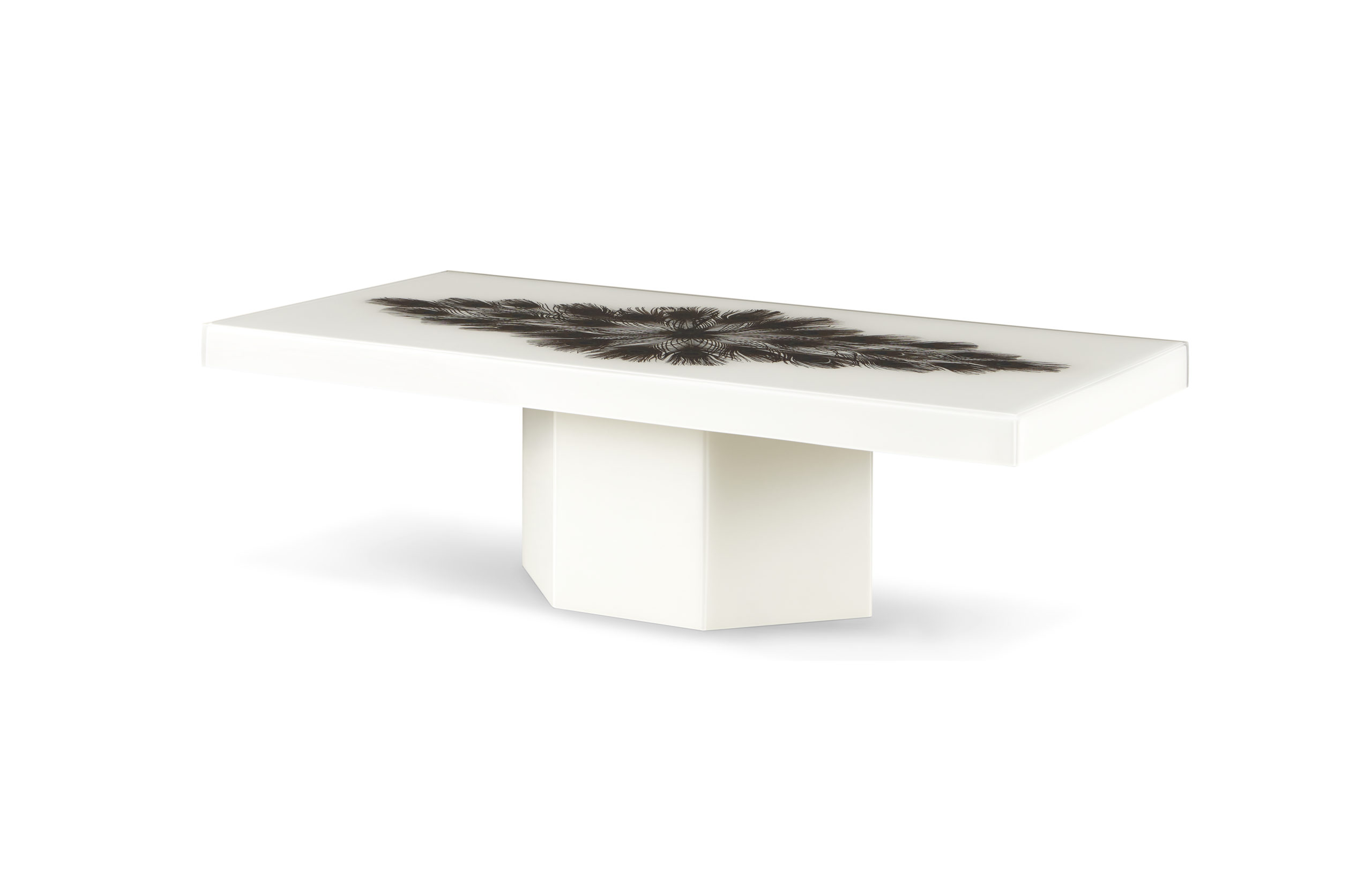 Baker_products_WNWN_peacock_rectangle_cocktail_table_BAA3256_FRONT_3QRT_resize-1-scaled-2