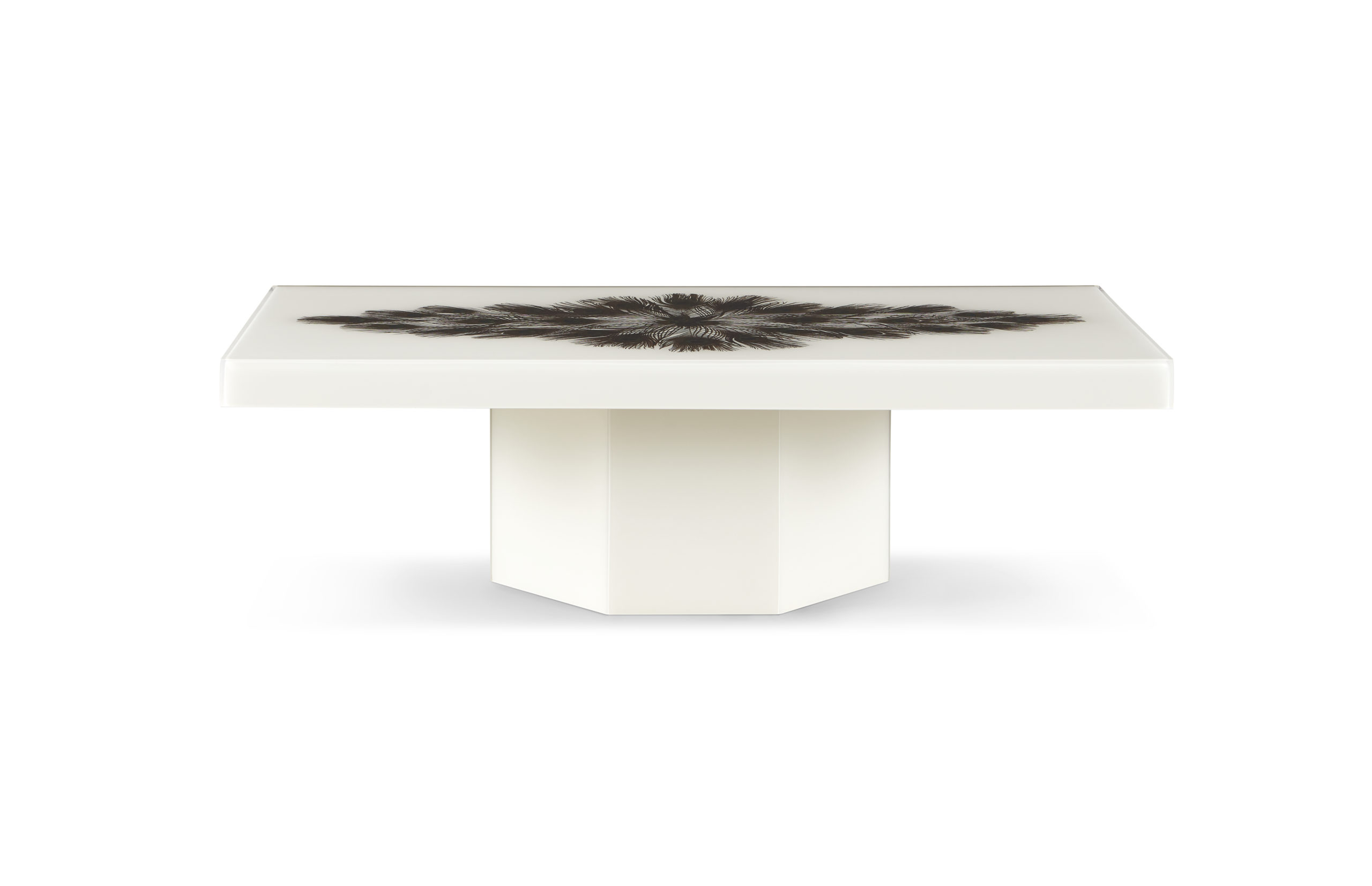 Baker_products_WNWN_peacock_rectangle_cocktail_table_BAA3256_FRONT_resize-scaled-2