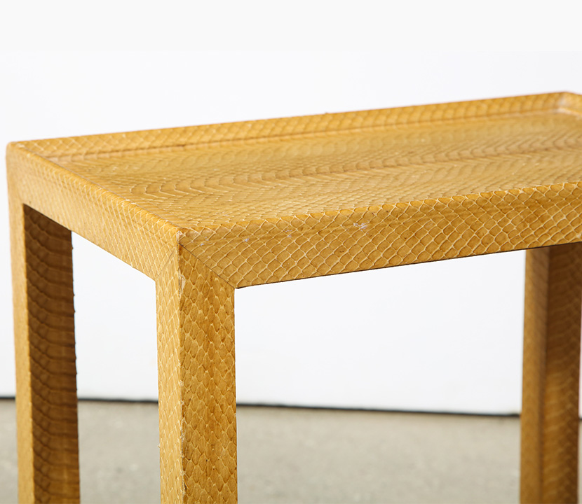 Snake Skin Table Gallery Image 2