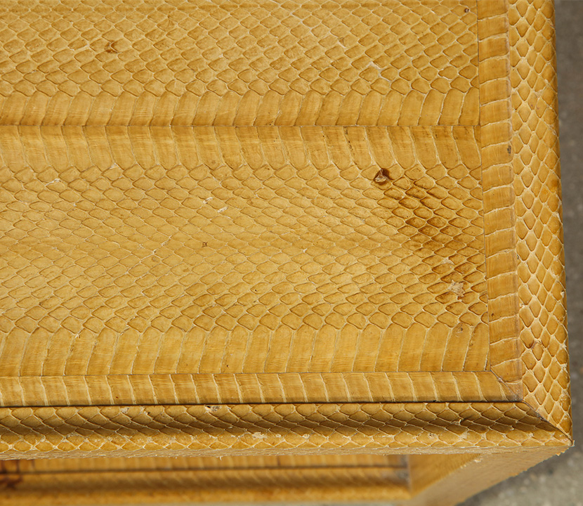 Snake Skin Table Gallery Image 4