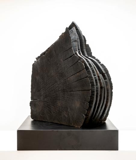 Wexler Gallery_David Nash_Black and Crack Sheaves