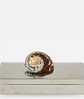The Gallery at 200 Lex_Chrome Box with Nautilus Shell_Thumbnail